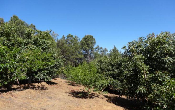 Foto de terreno industrial en venta en, michoacán, pátzcuaro, michoacán de ocampo, 1443421 no 20