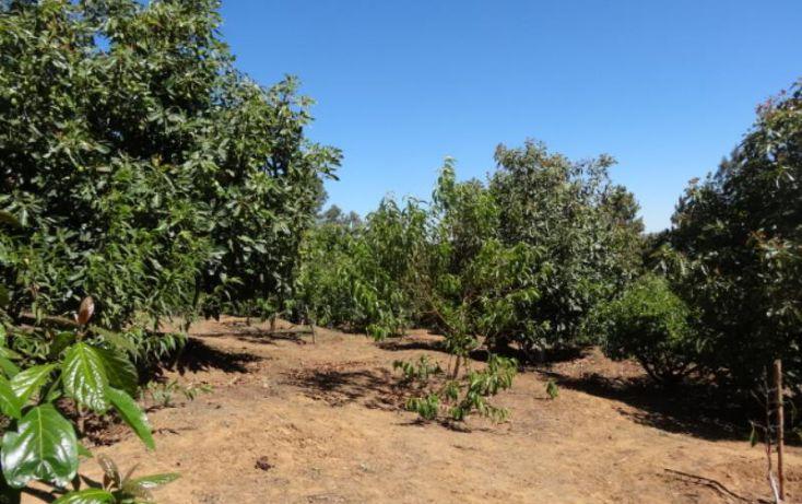Foto de terreno industrial en venta en, michoacán, pátzcuaro, michoacán de ocampo, 1443421 no 26
