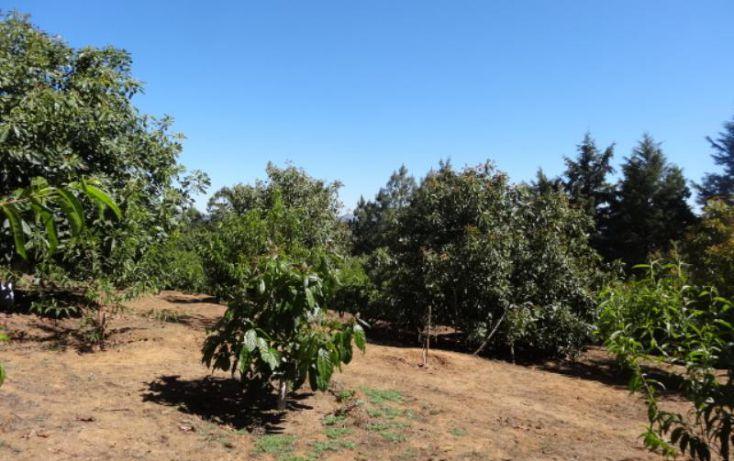 Foto de terreno industrial en venta en, michoacán, pátzcuaro, michoacán de ocampo, 1443421 no 27
