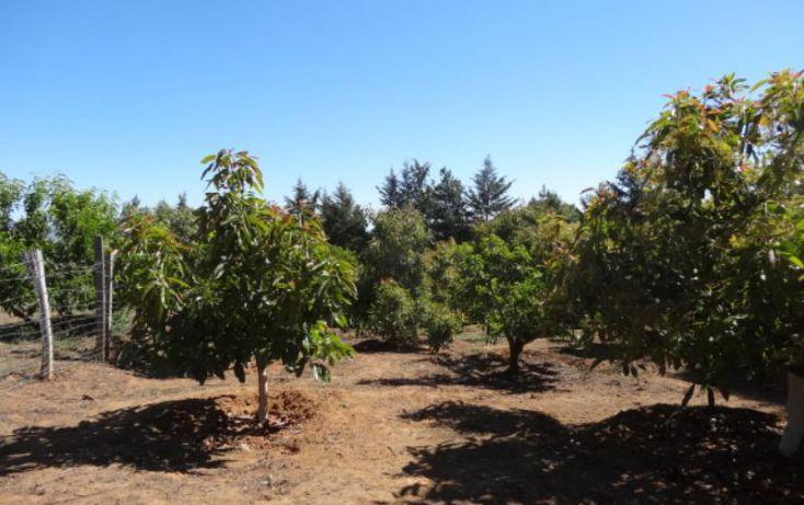 Foto de terreno industrial en venta en, michoacán, pátzcuaro, michoacán de ocampo, 1443421 no 29