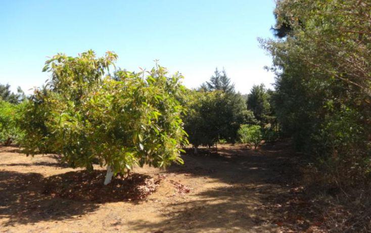 Foto de terreno industrial en venta en, michoacán, pátzcuaro, michoacán de ocampo, 1443421 no 30