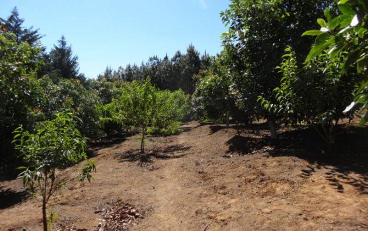 Foto de terreno industrial en venta en, michoacán, pátzcuaro, michoacán de ocampo, 1443421 no 32