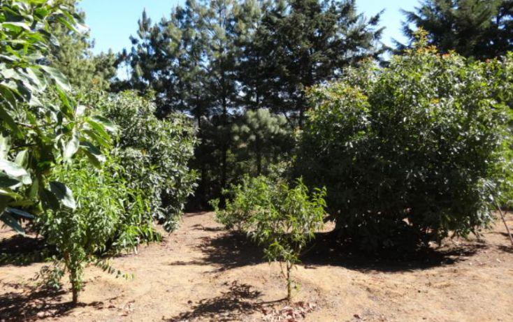 Foto de terreno industrial en venta en, michoacán, pátzcuaro, michoacán de ocampo, 1443421 no 33