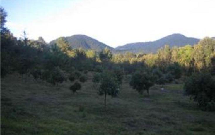 Foto de terreno habitacional en venta en, michoacán, pátzcuaro, michoacán de ocampo, 1464777 no 05