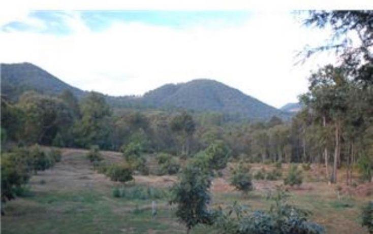 Foto de terreno habitacional en venta en, michoacán, pátzcuaro, michoacán de ocampo, 1464777 no 13
