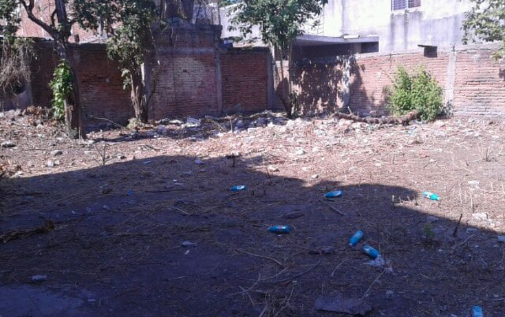 Foto de terreno comercial en venta en  , miguel alem?n, culiac?n, sinaloa, 1339637 No. 06