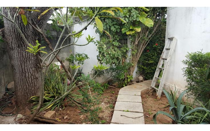 Foto de casa en venta en  , miguel alemán, mérida, yucatán, 1506625 No. 02