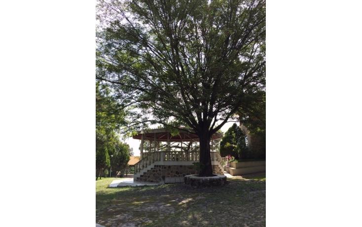 Foto de rancho en venta en, miguel de la madrid hurtado, zapopan, jalisco, 535817 no 36