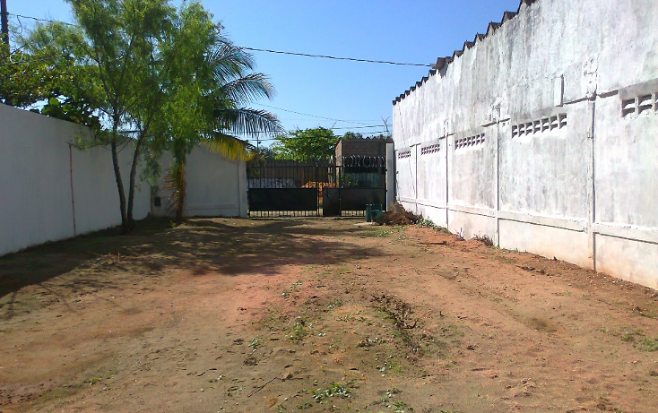 Foto de terreno habitacional en renta en  , miguel hidalgo, coatzacoalcos, veracruz de ignacio de la llave, 1739404 No. 10