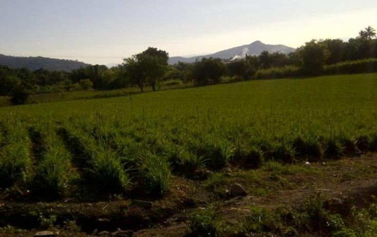 Foto de terreno comercial en venta en  , miguel hidalgo, temixco, morelos, 1416985 No. 01