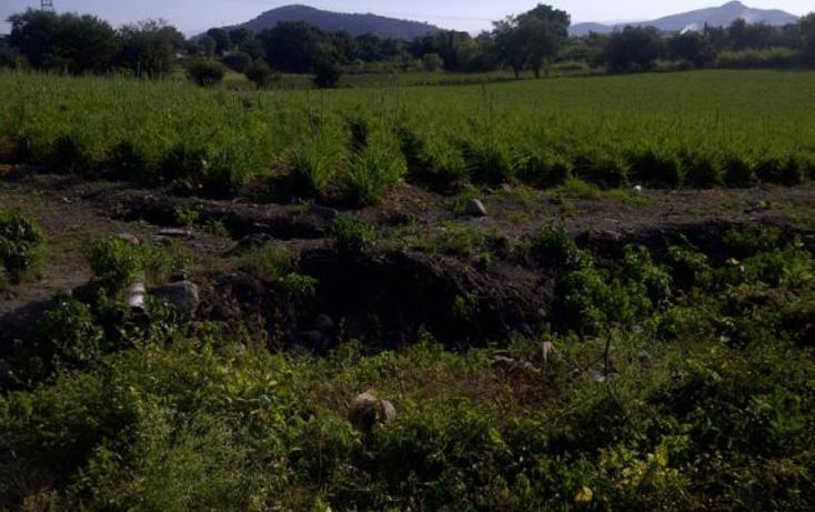 Foto de terreno comercial en venta en  , miguel hidalgo, temixco, morelos, 1416985 No. 02