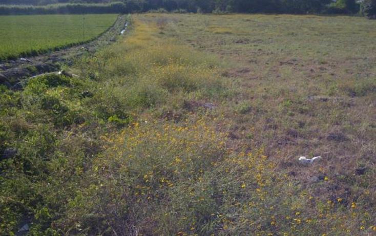 Foto de terreno comercial en venta en  , miguel hidalgo, temixco, morelos, 1416985 No. 04