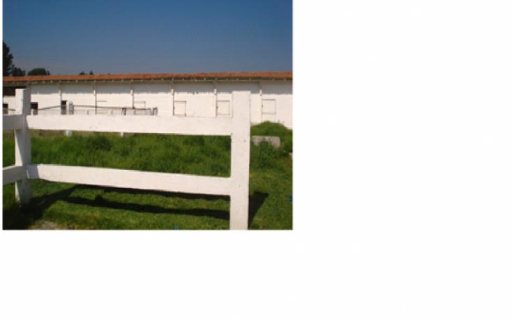 Foto de terreno habitacional en venta en, mina méxico, almoloya de juárez, estado de méxico, 1302931 no 04