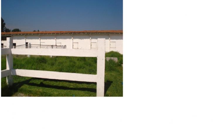 Foto de terreno habitacional en venta en  , mina m?xico, almoloya de ju?rez, m?xico, 1302931 No. 04