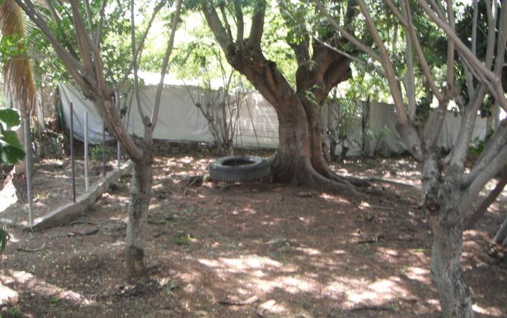Foto de casa en venta en  , mirador, ayala, morelos, 1463523 No. 04