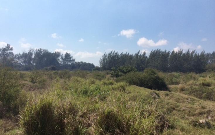 Foto de terreno habitacional en renta en  , miramapolis, ciudad madero, tamaulipas, 1098589 No. 05