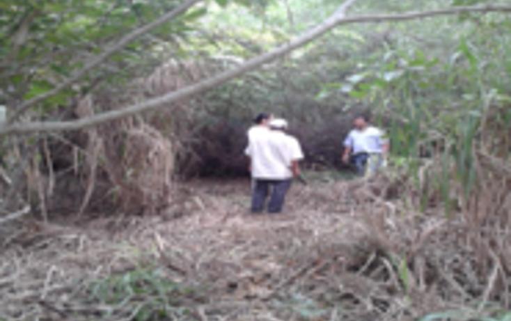 Foto de terreno habitacional en venta en  , miramapolis, ciudad madero, tamaulipas, 1646536 No. 05