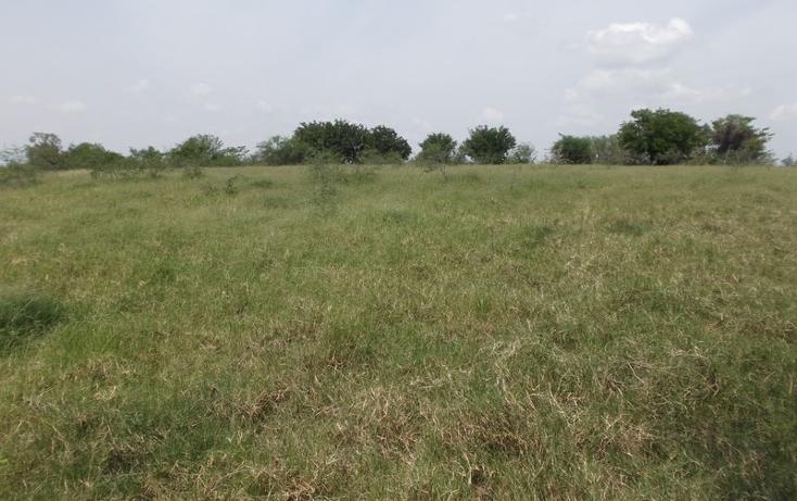 Foto de terreno habitacional en venta en  , miramar, altamira, tamaulipas, 1109839 No. 06