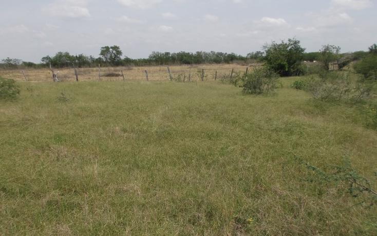 Foto de terreno habitacional en venta en  , miramar, altamira, tamaulipas, 1109839 No. 07