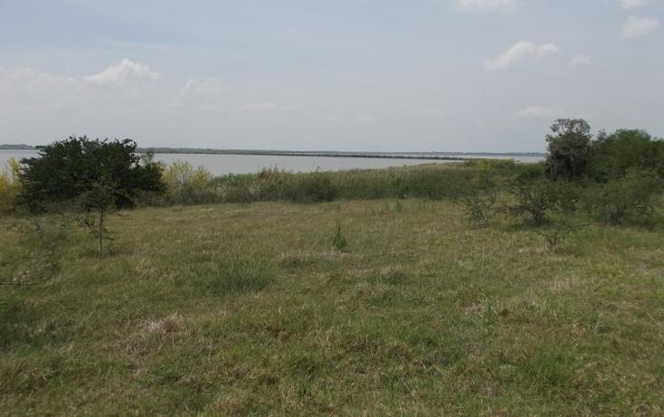 Foto de terreno habitacional en venta en  , miramar, altamira, tamaulipas, 1109839 No. 08
