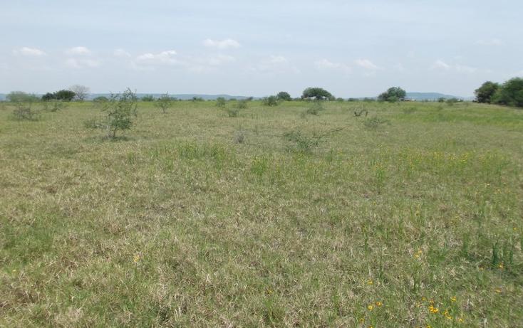 Foto de terreno habitacional en venta en  , miramar, altamira, tamaulipas, 1109839 No. 13