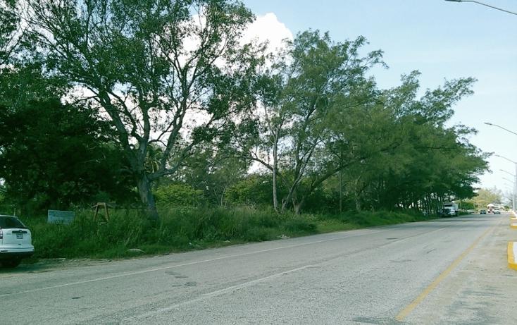 Foto de terreno comercial en venta en  , miramar, ciudad madero, tamaulipas, 1043147 No. 01