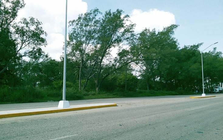 Foto de terreno comercial en venta en  , miramar, ciudad madero, tamaulipas, 1043147 No. 02