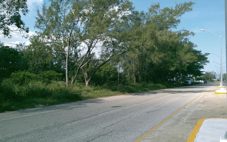 Foto de terreno comercial en venta en  , miramar, ciudad madero, tamaulipas, 1043147 No. 03