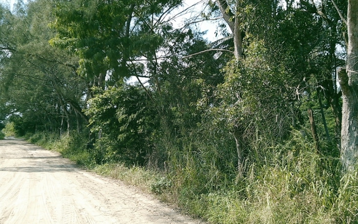 Foto de terreno comercial en venta en  , miramar, ciudad madero, tamaulipas, 1043147 No. 04