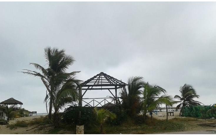 Foto de terreno comercial en renta en  , miramar, ciudad madero, tamaulipas, 1097043 No. 01