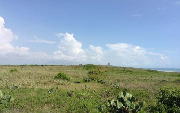 Foto de terreno habitacional en venta en  , miramar, ciudad madero, tamaulipas, 1104217 No. 02