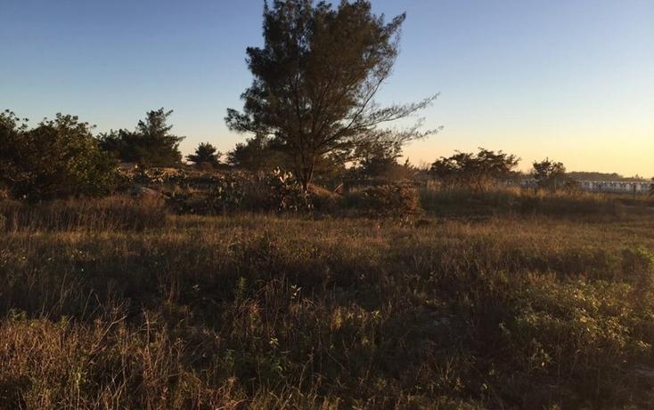 Foto de terreno habitacional en venta en  , miramar, ciudad madero, tamaulipas, 1188995 No. 03