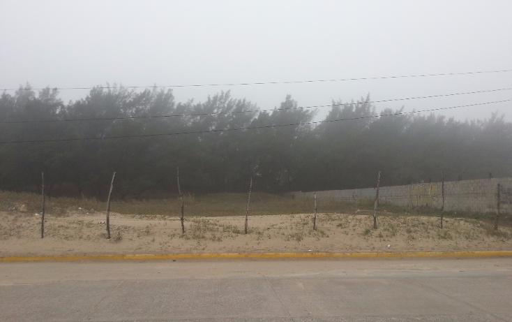 Foto de terreno habitacional en venta en  , miramar, ciudad madero, tamaulipas, 1293725 No. 01