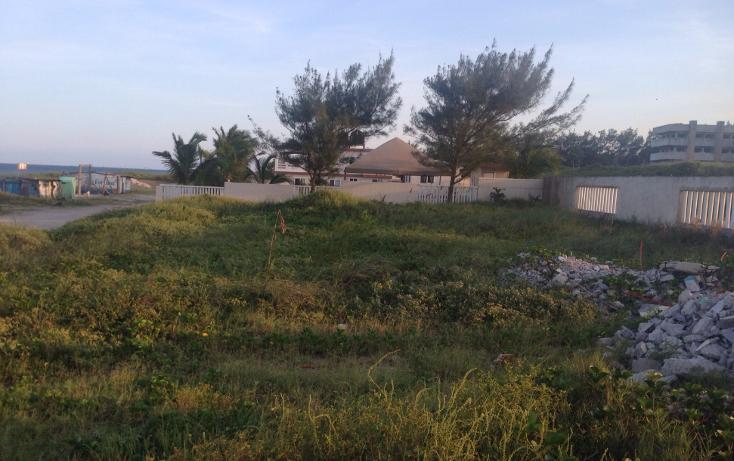 Foto de terreno habitacional en venta en  , miramar, ciudad madero, tamaulipas, 1375629 No. 03