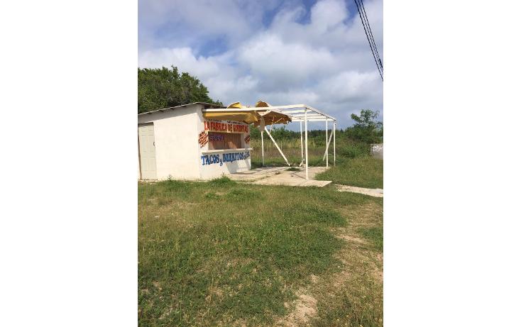 Foto de terreno habitacional en renta en  , miramar, ciudad madero, tamaulipas, 1683118 No. 02