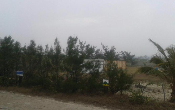 Foto de terreno habitacional en venta en  , miramar, ciudad madero, tamaulipas, 1775892 No. 02