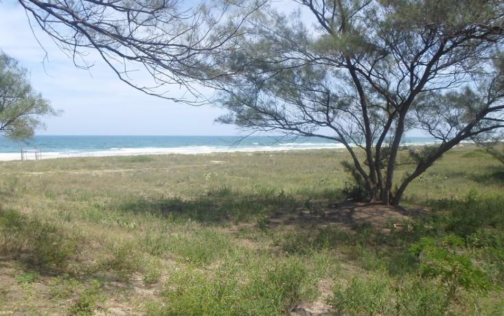 Foto de terreno habitacional en venta en  , miramar, ciudad madero, tamaulipas, 2627375 No. 04