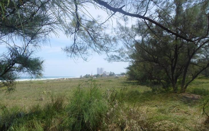 Foto de terreno habitacional en venta en  , miramar, ciudad madero, tamaulipas, 2627375 No. 05