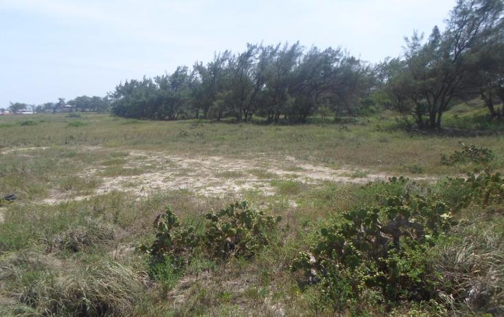 Foto de terreno habitacional en venta en  , miramar, ciudad madero, tamaulipas, 2627375 No. 06