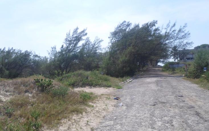 Foto de terreno habitacional en venta en  , miramar, ciudad madero, tamaulipas, 2627375 No. 07