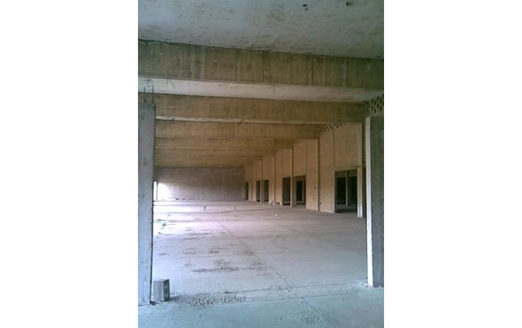 Foto de nave industrial en renta en  , miramar sector 1, altamira, tamaulipas, 1058041 No. 06