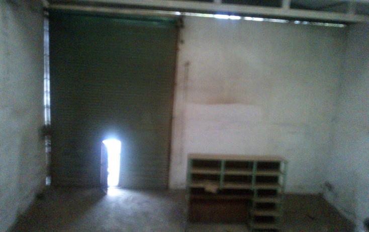 Foto de nave industrial en venta en  , miramar sector 1, altamira, tamaulipas, 1496203 No. 03