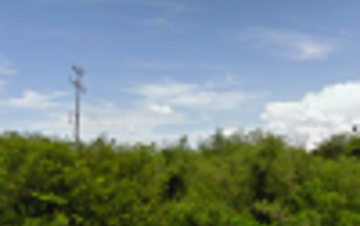 Foto de terreno habitacional en venta en  , misnebalam, progreso, yucatán, 1113045 No. 03