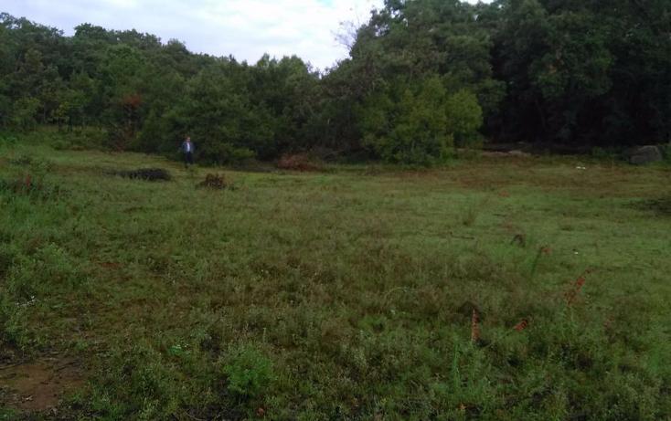 Foto de terreno habitacional en venta en  , mixquiapan, omitlán de juárez, hidalgo, 2624539 No. 02