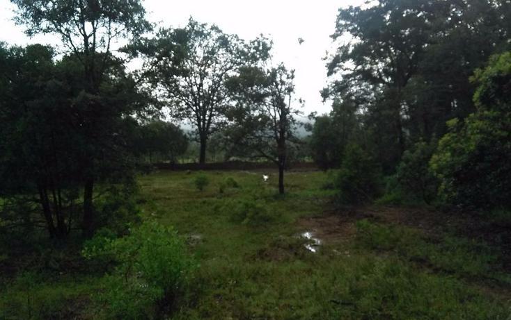 Foto de terreno habitacional en venta en  , mixquiapan, omitlán de juárez, hidalgo, 2624539 No. 04