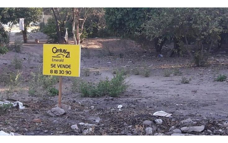 Foto de terreno habitacional en venta en  , mochicahui, el fuerte, sinaloa, 1861846 No. 04
