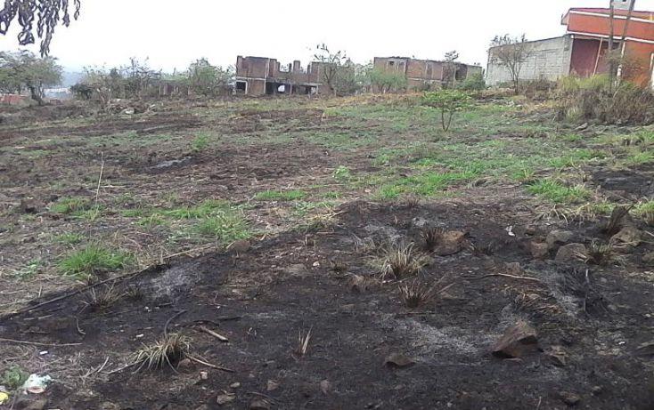 Foto de terreno habitacional en venta en modesto rangel, lomas de trujillo, emiliano zapata, morelos, 1986316 no 07