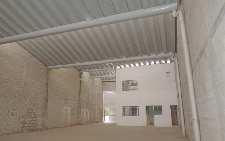 Foto de nave industrial en renta en  , mojoneras, puerto vallarta, jalisco, 1157895 No. 06