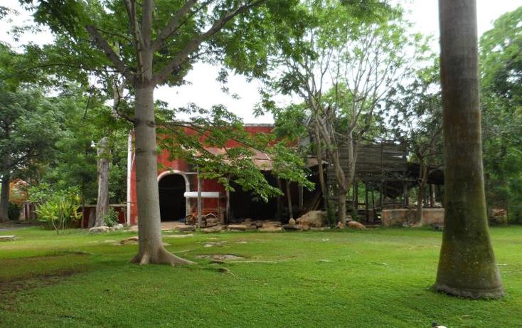 Foto de rancho en venta en  , molas, m?rida, yucat?n, 1371685 No. 01