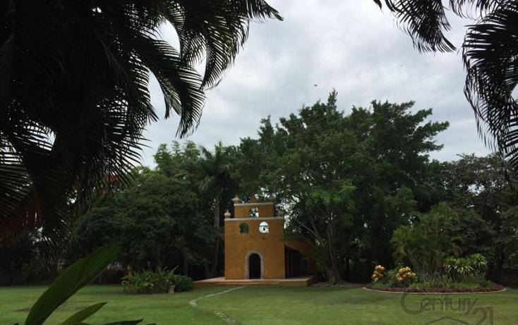 Foto de rancho en venta en  , molas, mérida, yucatán, 1719412 No. 19